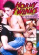 Horny Twinks DVD - Front