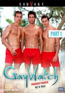 Gaywatch Part 1 DVDR (NC)