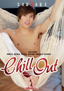 Chill Out DVD