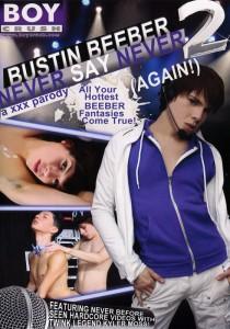 Bustin Beeber 2 DVDR (NC)