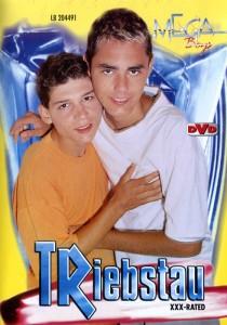 Triebstau DVDR (NC)