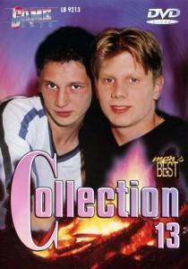 Game Boys Collection 13 - Sexplosion + Pralle Schwänze DVDR (NC)