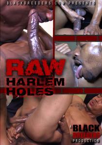 Raw Harlem Holes DVD