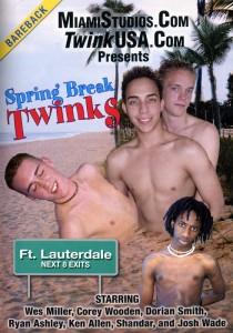 Spring Break Twinks DVD