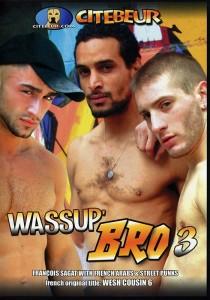 Wassup Bro 3 DVD (NC)