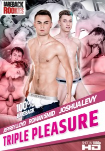 Triple Pleasure DVD