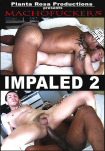 Impaled 2 DVD